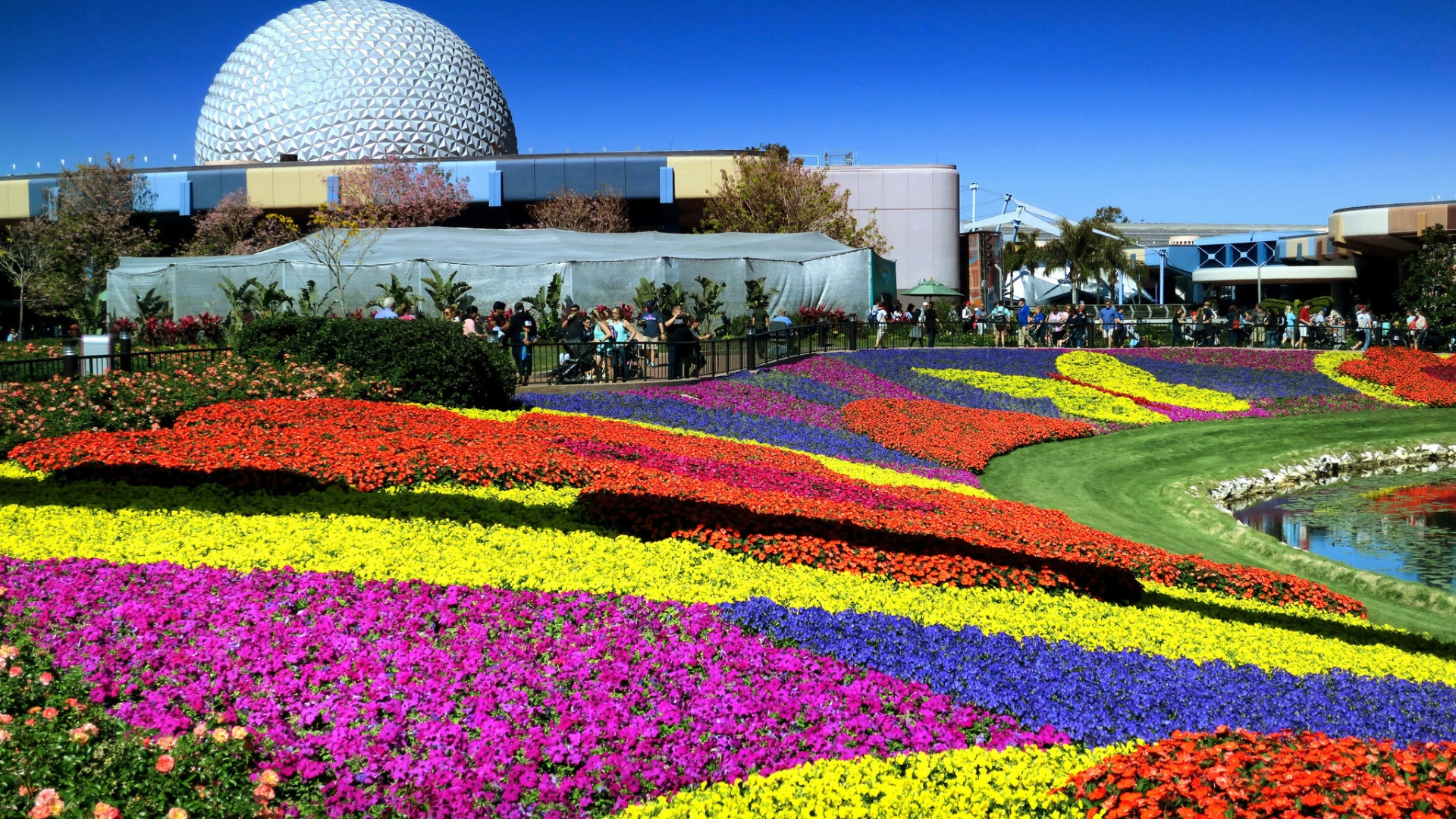 strolling — and nibbling — through epcot international flower