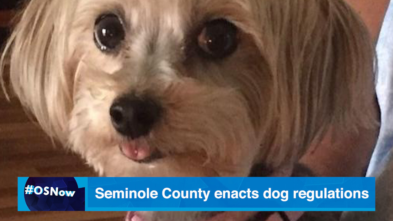 Seminole County enacts new dog regulations to muzzle
