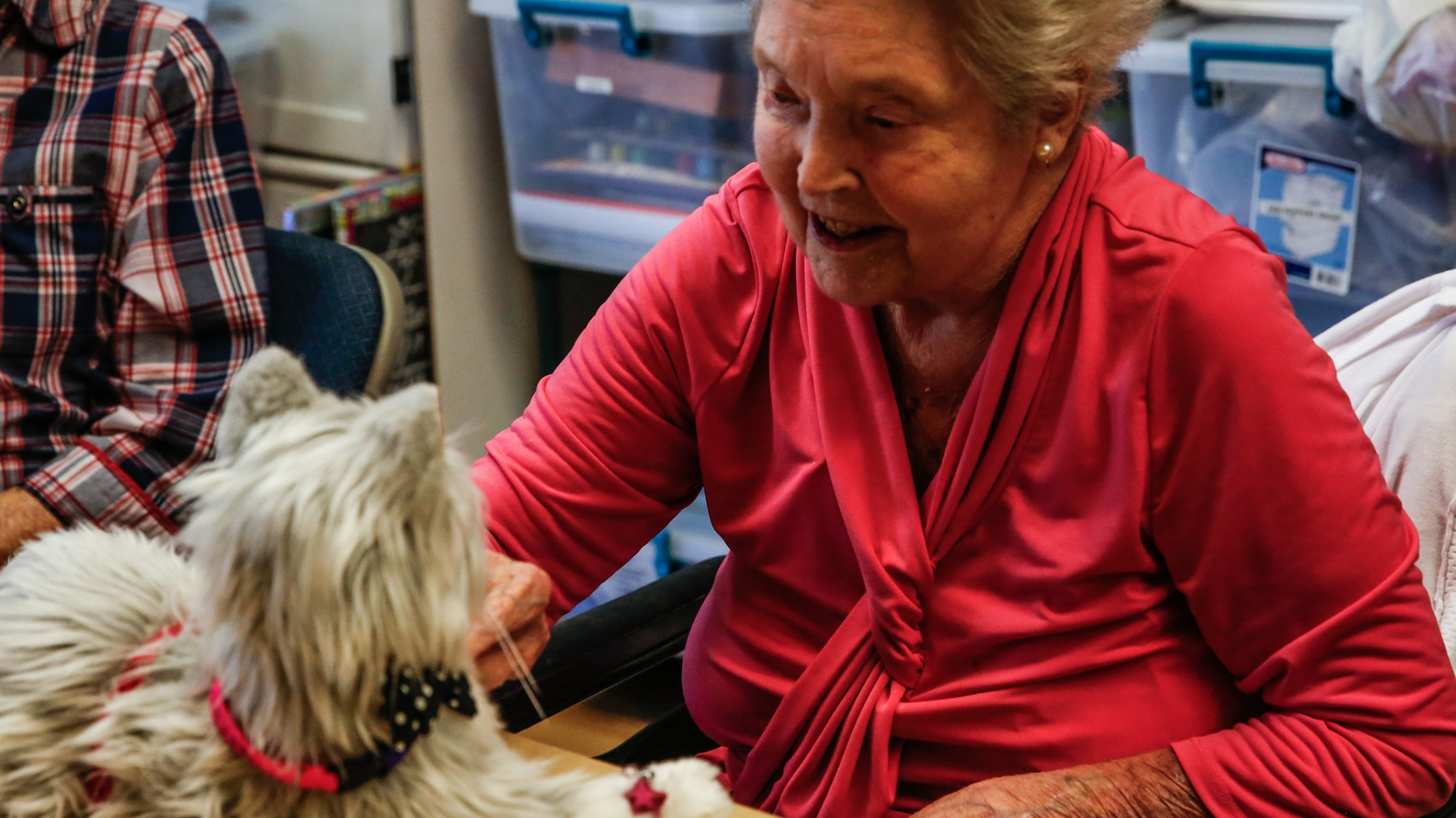 Robotic pets — a memory-impaired senior's best friend
